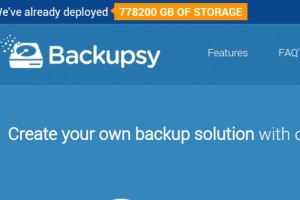 Backupsy – 100GB HDD Storage KVM VPS 仅 $40.00 年付