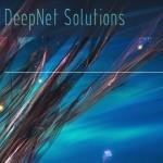 [售罄] DeepNet Solutions – OpenVZ VPS 特价机套餐 from $2 per month + 免费NAT VPS