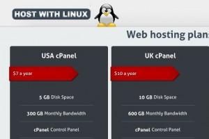 HostWithLinux – 1GB 内存 OpenVZ 香港 VPS 最低 $4每月, 2Gbps Network Port