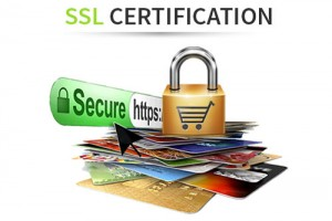 Top 免费& Cheap SSL Certificate商家