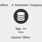 NexHost Egg – Cheapest KVM VPS 256MB 内存 from $3.5 USD 年付