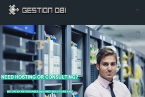 [Flash Sale] Gestion DBI – 优惠25% OpenVZ VPS in 7位置