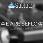 SeFlow – Intel Skylake Server 最低 €29每月 – 免费DDos防护 & No 安装费