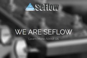 SeFlow – Intel Skylake Server 最低 €29每月 – 免费DDos防护 & 无初装费