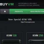 BuyVM.NET – New 特价机 KVM VPS – High Performance VPS with E3 CPU/ SSD Storage – 免费CN2流量 – Block Storage Slabs可用