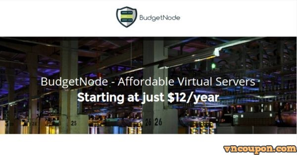 BudgetNode – DDoS防护 VPS 最低 $12每年 in Ashburn, Virginia