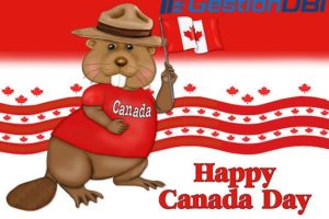 GestionDBI – Happy Canada day! Get Huge折扣 on KVM, OpenVZ VPS