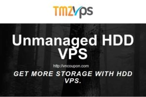 tmzVPS – Unmanaged VPS with 2GB RAM/ 50GB HDD/ 2TB 流量 仅 $6.8每月 年付 pay