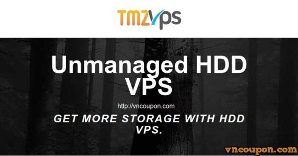 tmzVPS – Unmanaged VPS with 2GB 内存/ 50GB HDD/ 2TB流量 仅 $6.8每月 年付 pay