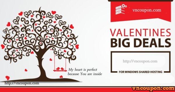 VPS 提供 – Valentine's day 特价机 with huge折扣