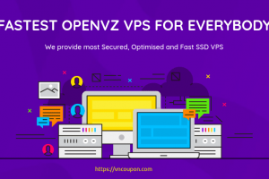 DesiVPS – 特价机 KVM VPS 最低 $15每年 in 洛杉矶 & The Hague, Netherlands