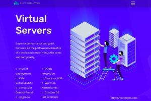 [Autumn 特价机] SoftShellWeb – 特价机 KVM VPS 最低 $5每月 – 3 Core / 3 GB内存/ 100% SSD / DDoS防护 / 亚洲优化线路