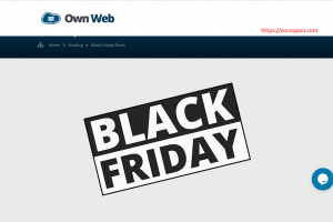 [黑色星期五 2020] Own Web – 特价机 VPS 最低 21.00英镑每年 in 德国& UK