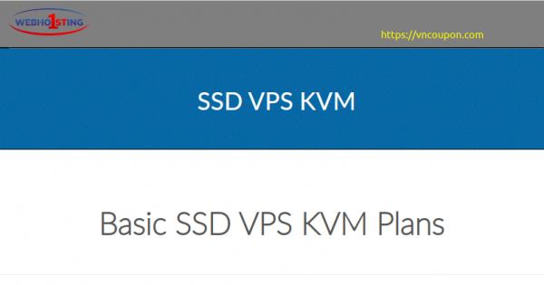 Webhosting1st – 优惠50% SSD KVM VPS 最低 $3每月 in Poland – DDos防护