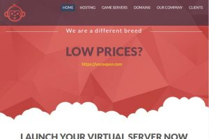 Chimpanzee Host – Custom Cloud VPS with AMD EPYC CPUs, Unmetered 流量, 欧洲服务器, Bitcoin Payment