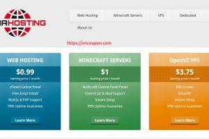 TNAHosting – 12GB内存OpenVZ & 4GB内存KVM VPS 提供 仅 $5每月