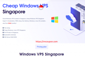 VPSServerUSA – Cheap Singapore Windows VPS 提供 最低 $8每月 – 流量 无限 | SSD Storage
